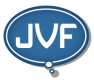JVF Consulting LLC